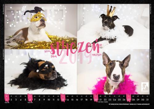 AST kalendarz2019-2