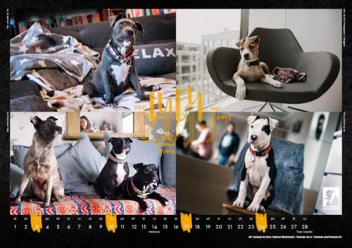 AST kalendarz2019-3